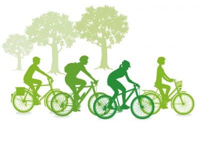Firmenradtour - Grafik mit Baum